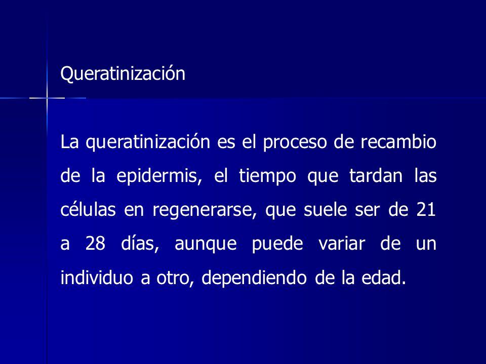 Queratinización