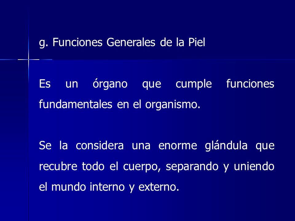 g. Funciones Generales de la Piel