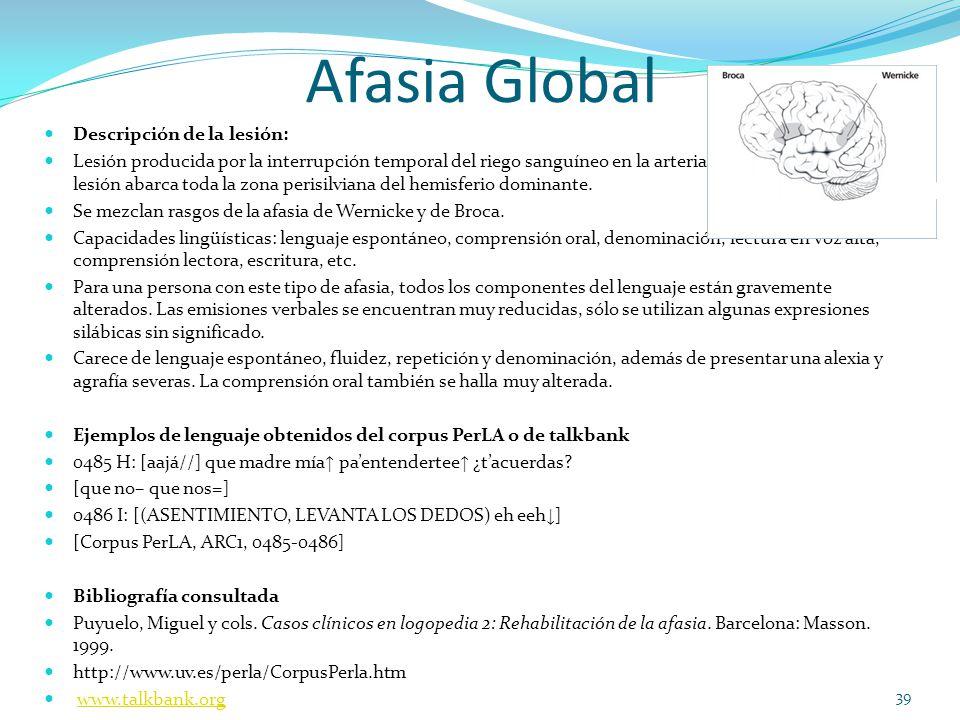 Afasia Global Descripción de la lesión: