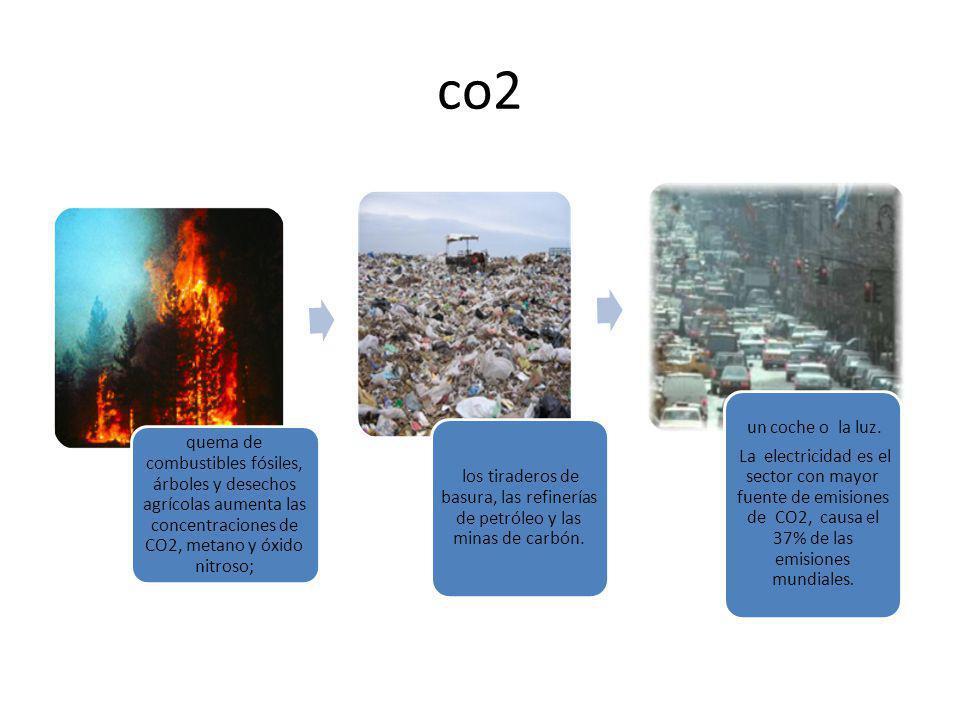 co2 quema de combustibles fósiles, árboles y desechos agrícolas aumenta las concentraciones de CO2, metano y óxido nitroso;