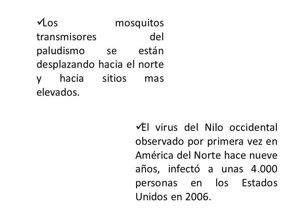 Los mosquitos transmisores del paludismo se están desplazando hacia el norte y hacia sitios mas elevados.