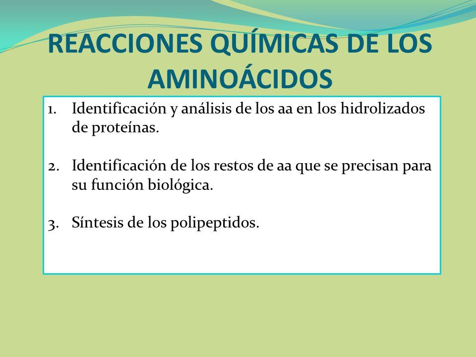 REACCIONES QUÍMICAS DE LOS AMINOÁCIDOS