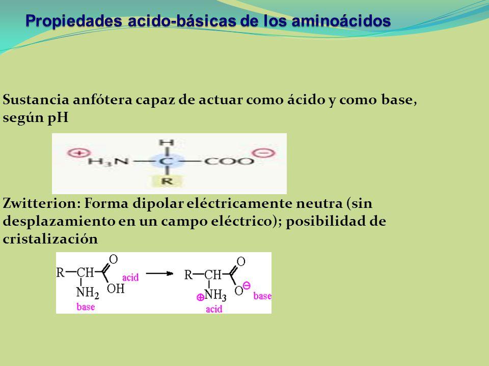 Propiedades acido-básicas de los aminoácidos