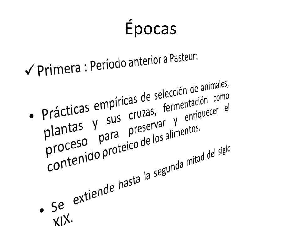 Épocas Primera : Período anterior a Pasteur: