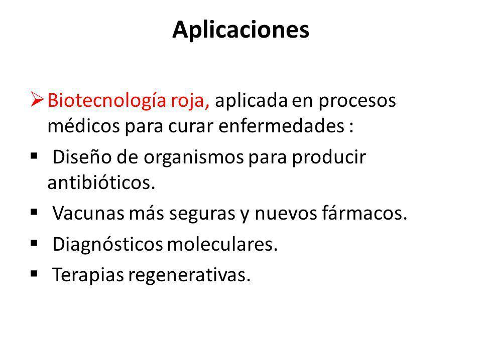 Aplicaciones Biotecnología roja, aplicada en procesos médicos para curar enfermedades : Diseño de organismos para producir antibióticos.