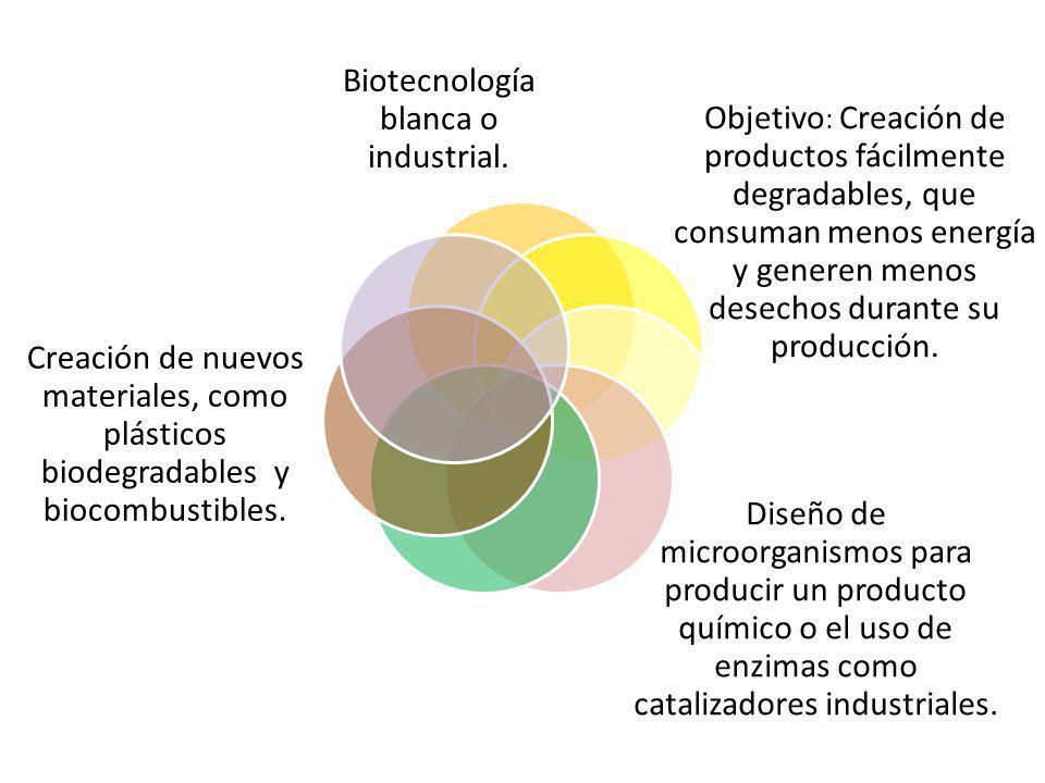 Biotecnología blanca o industrial.
