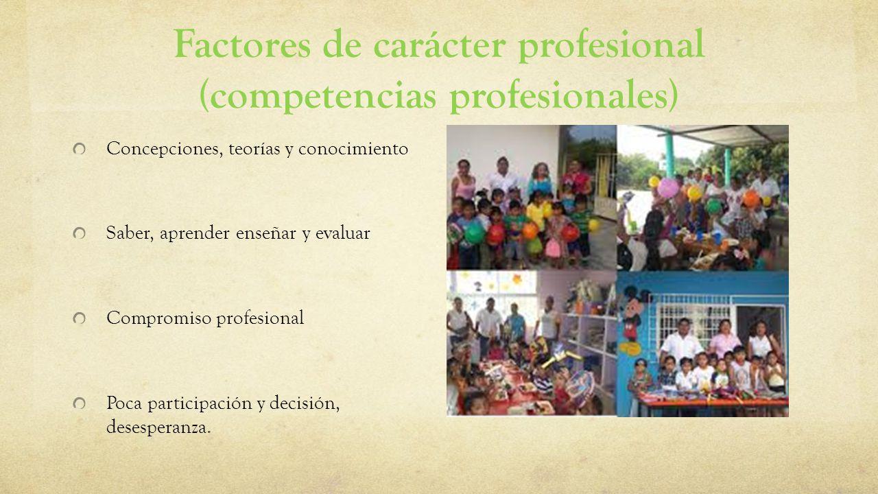 Factores de carácter profesional (competencias profesionales)