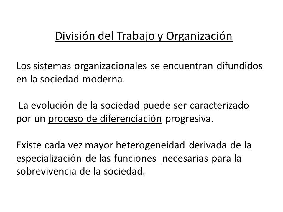 División del Trabajo y Organización