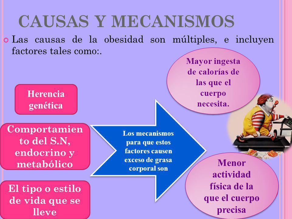 CAUSAS Y MECANISMOS Las causas de la obesidad son múltiples, e incluyen factores tales como:.
