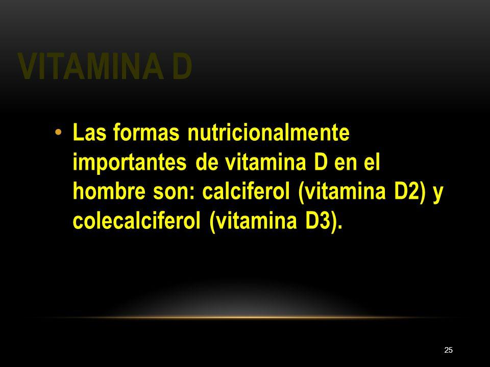 Vitamina D Las formas nutricionalmente importantes de vitamina D en el hombre son: calciferol (vitamina D2) y colecalciferol (vitamina D3).