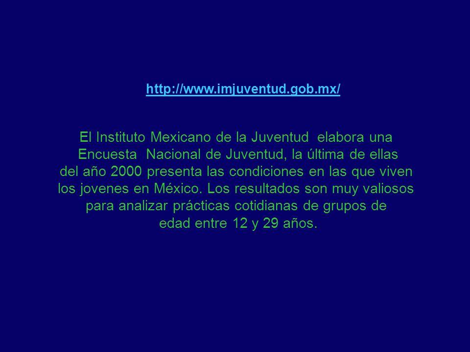 El Instituto Mexicano de la Juventud elabora una