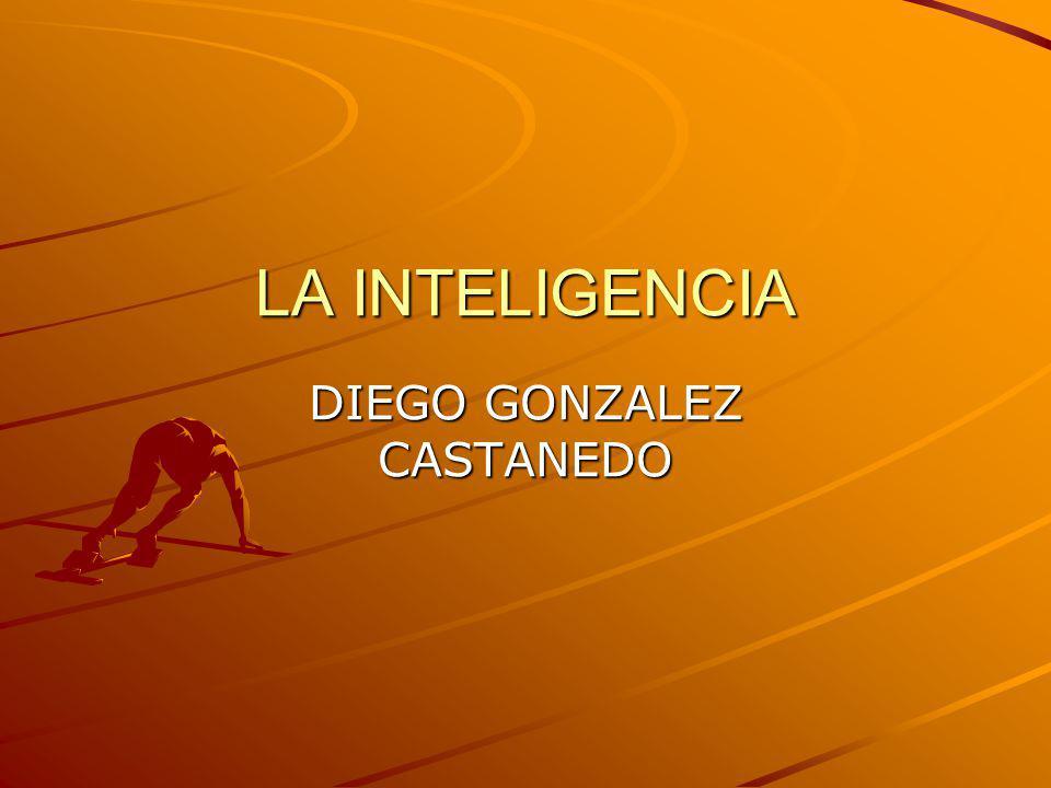 DIEGO GONZALEZ CASTANEDO