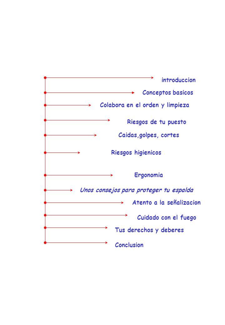 Indice introduccion Conceptos basicos Colabora en el orden y limpieza
