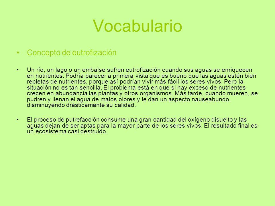 Vocabulario Concepto de eutrofización