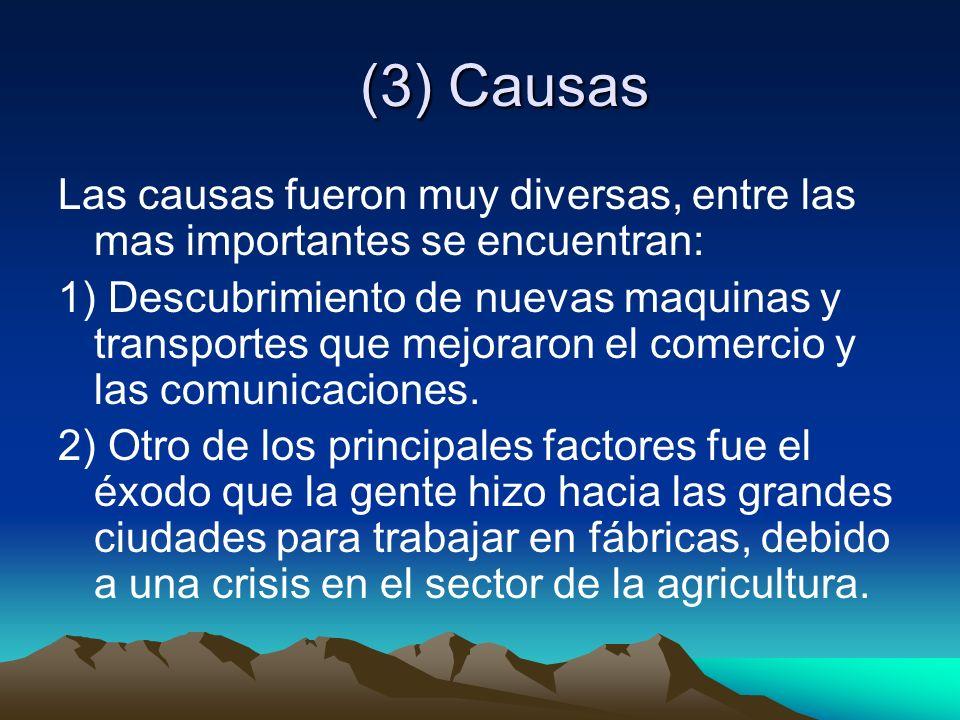 (3) Causas Las causas fueron muy diversas, entre las mas importantes se encuentran: