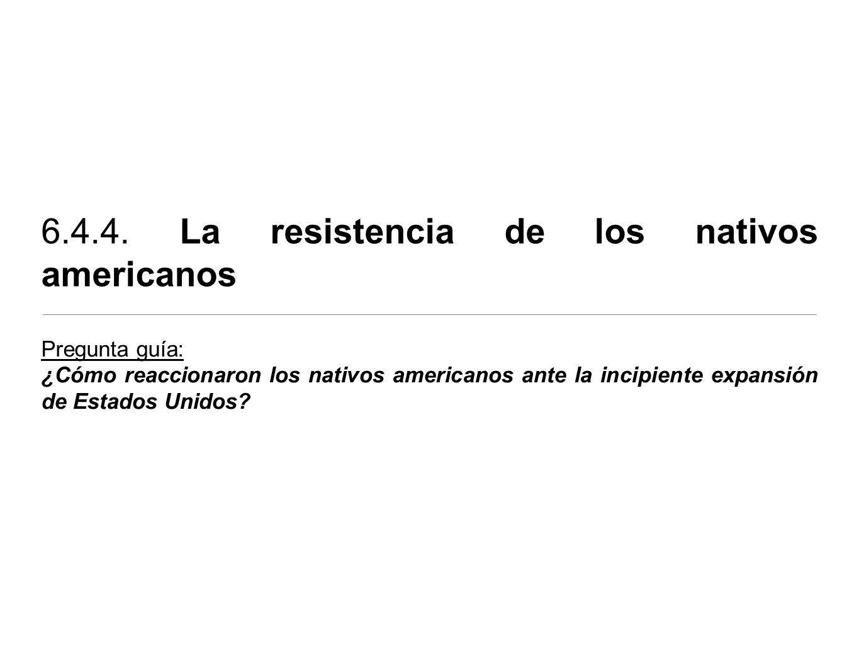 6.4.4. La resistencia de los nativos americanos