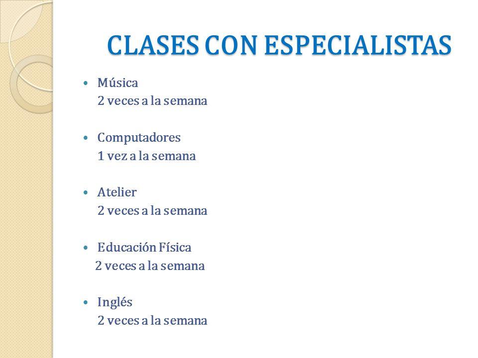 CLASES CON ESPECIALISTAS