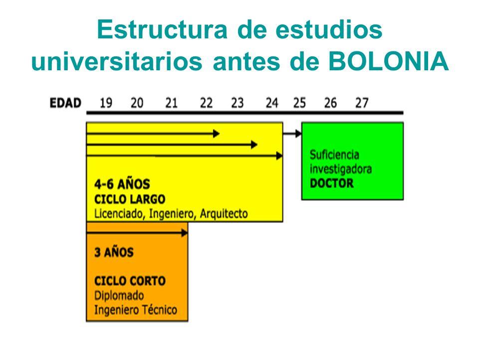 Estructura de estudios universitarios antes de BOLONIA