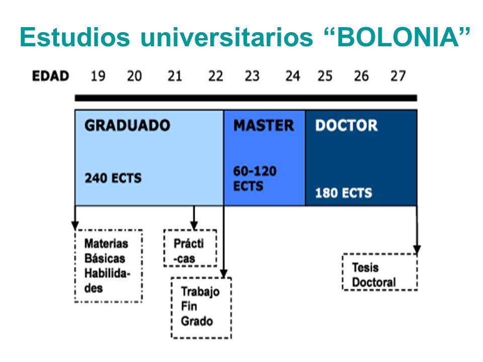 Estudios universitarios BOLONIA