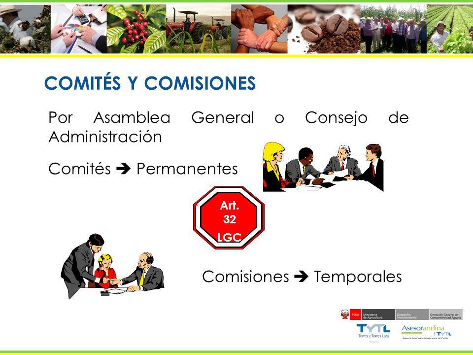 COMITÉS Y COMISIONES Por Asamblea General o Consejo de Administración