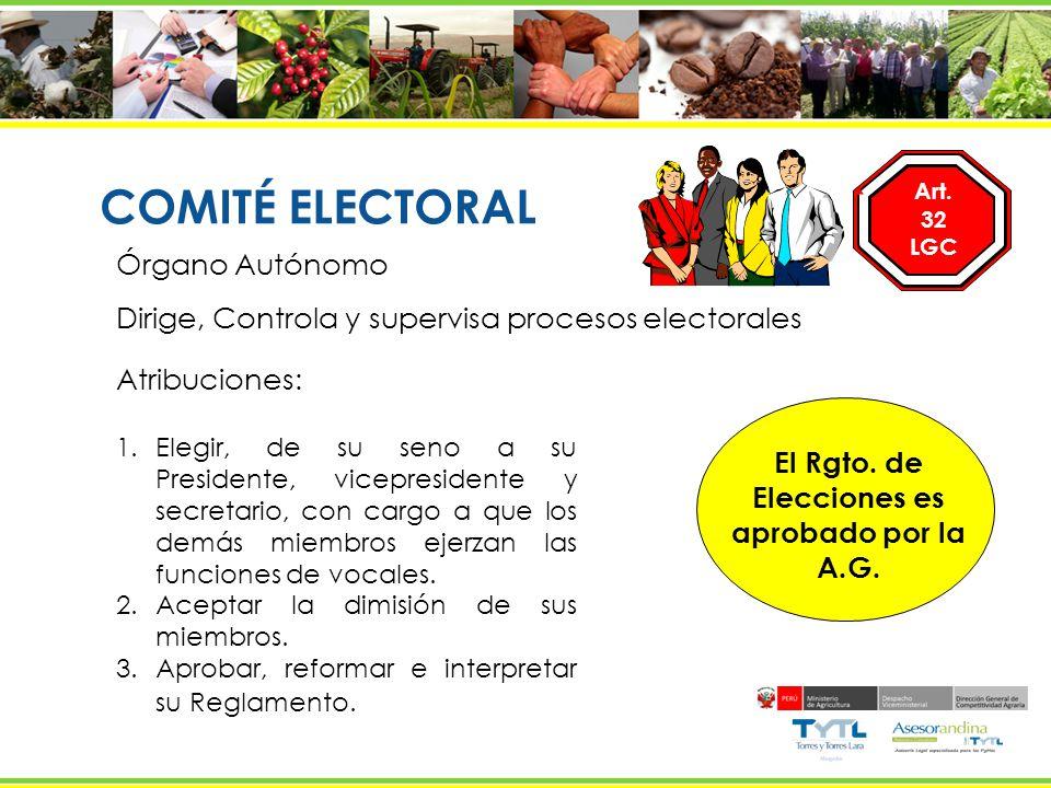 El Rgto. de Elecciones es aprobado por la A.G.
