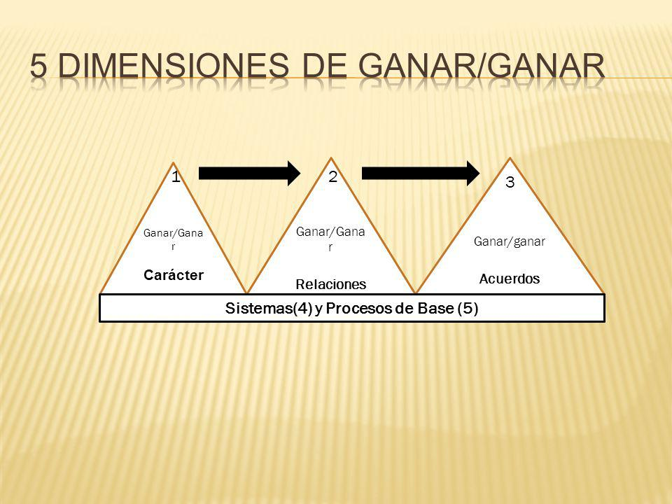 5 Dimensiones de Ganar/Ganar