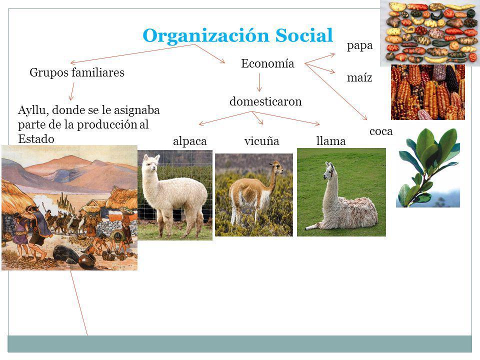 Organización Social papa Economía Grupos familiares maíz domesticaron