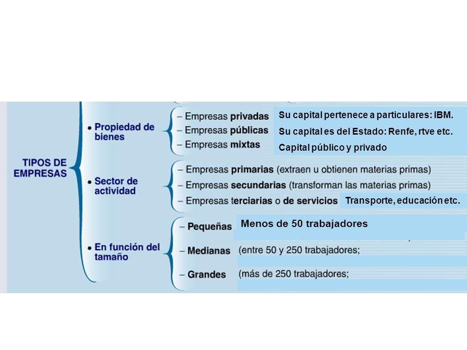 Menos de 50 trabajadores Su capital pertenece a particulares: IBM.