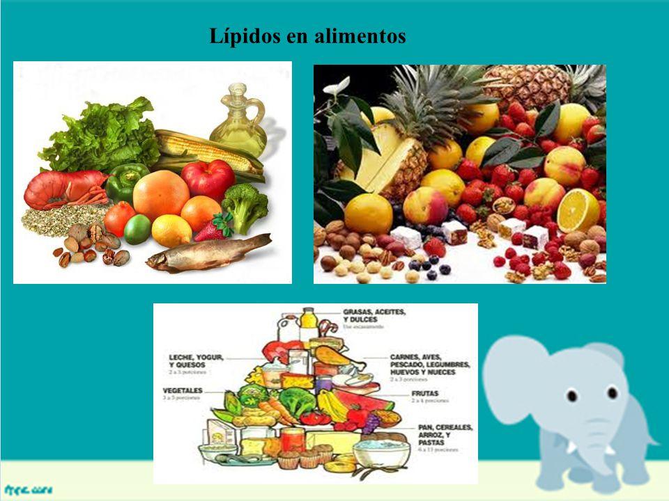 Lípidos en alimentos