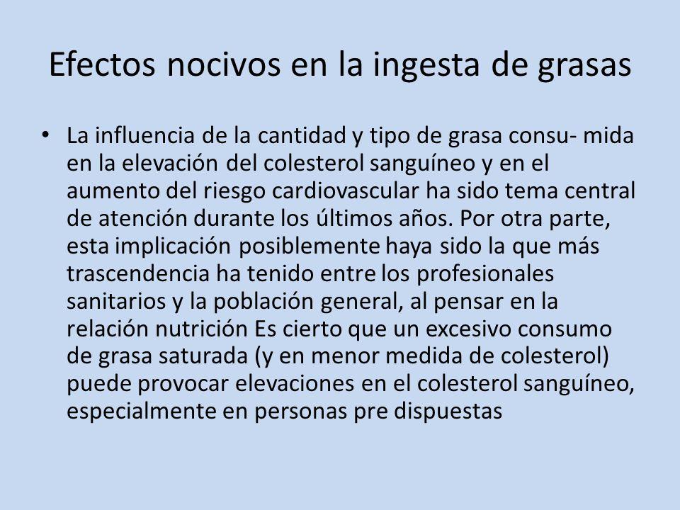 Efectos nocivos en la ingesta de grasas