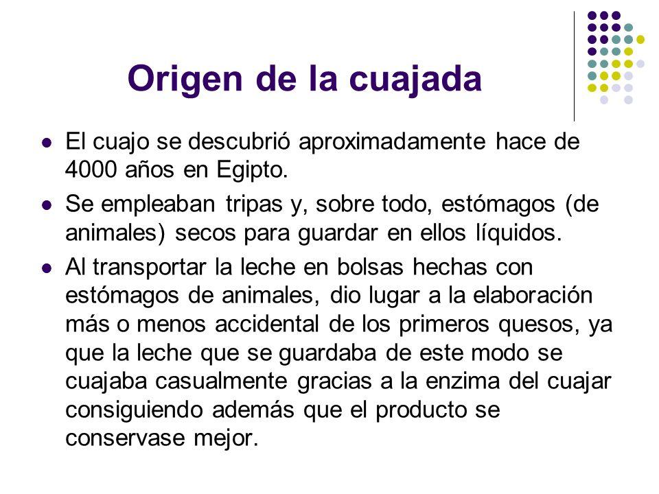 Origen de la cuajada El cuajo se descubrió aproximadamente hace de 4000 años en Egipto.