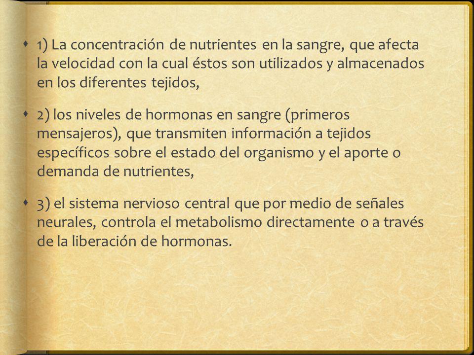 1) La concentración de nutrientes en la sangre, que afecta la velocidad con la cual éstos son utilizados y almacenados en los diferentes tejidos,