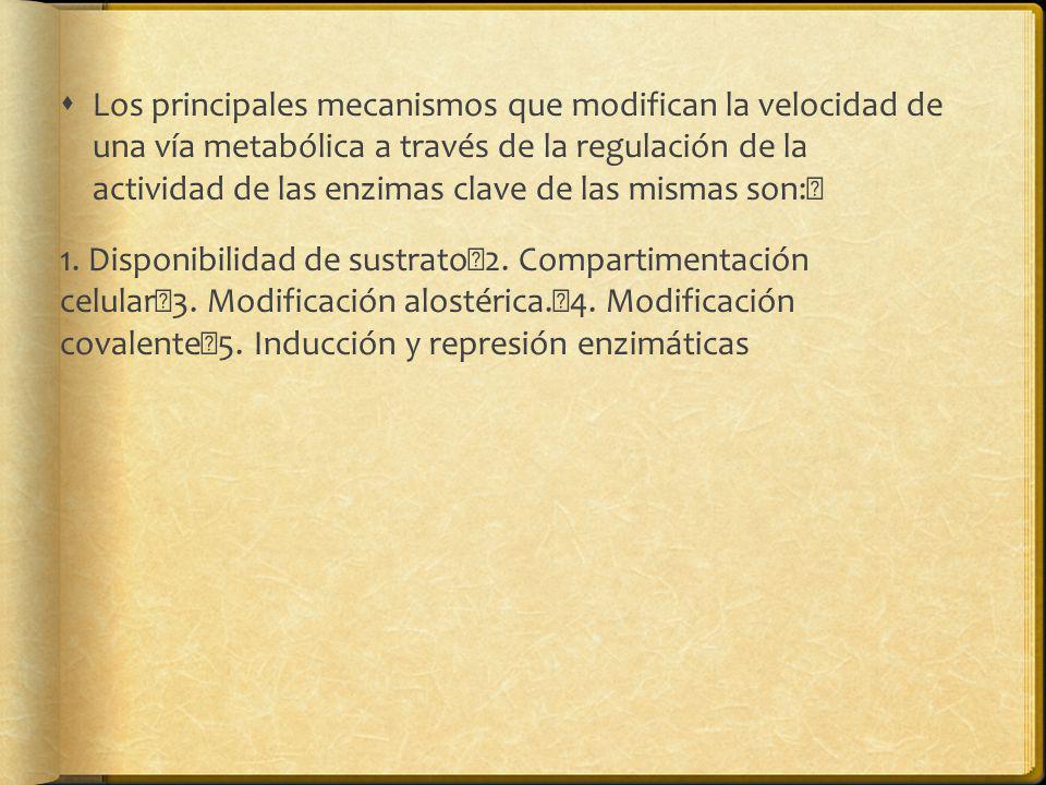Los principales mecanismos que modifican la velocidad de una vía metabólica a través de la regulación de la actividad de las enzimas clave de las mismas son: