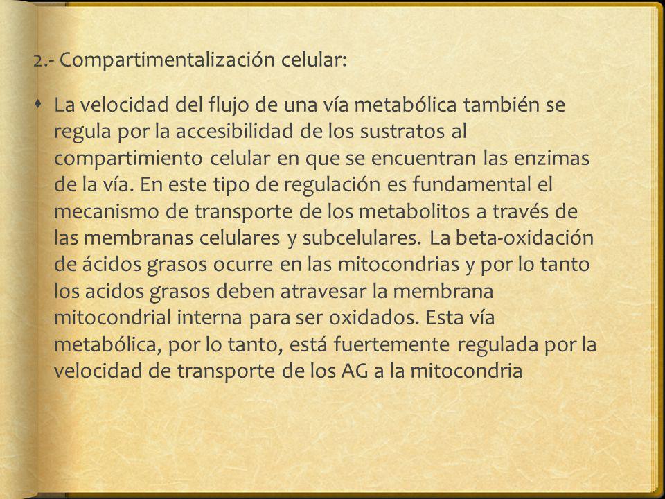 2.- Compartimentalización celular:
