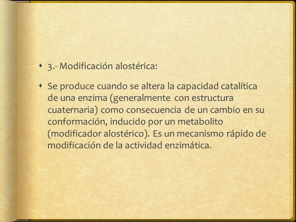 3.- Modificación alostérica: