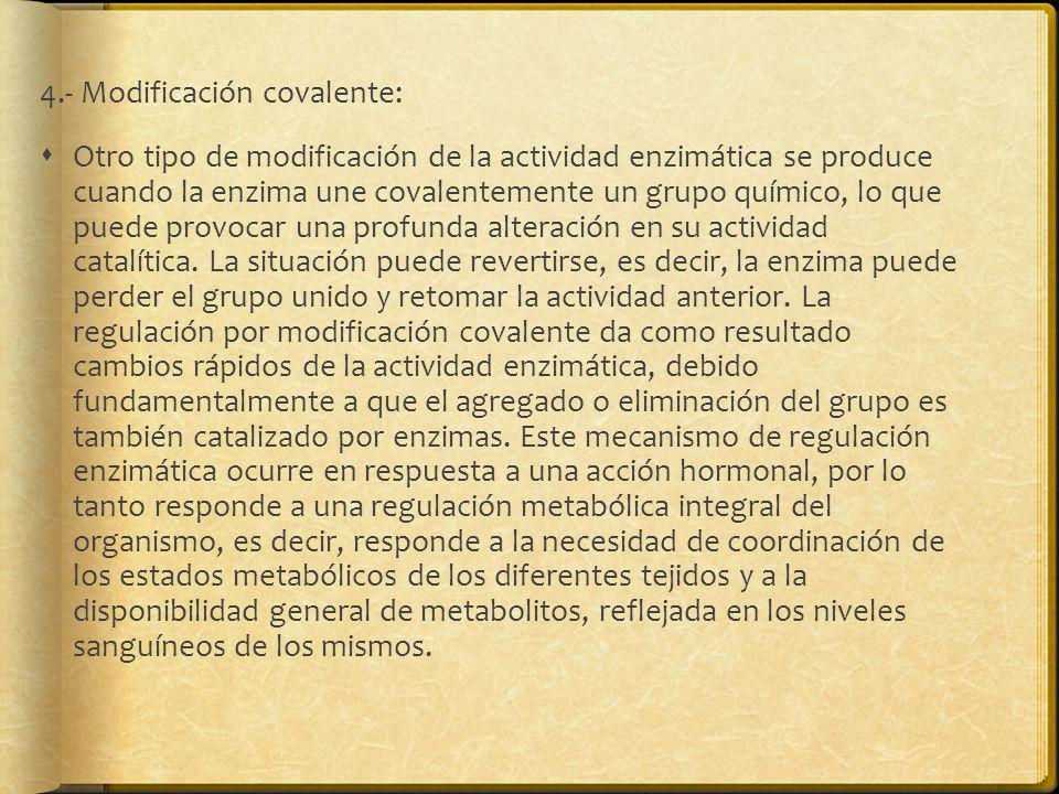 4.- Modificación covalente: