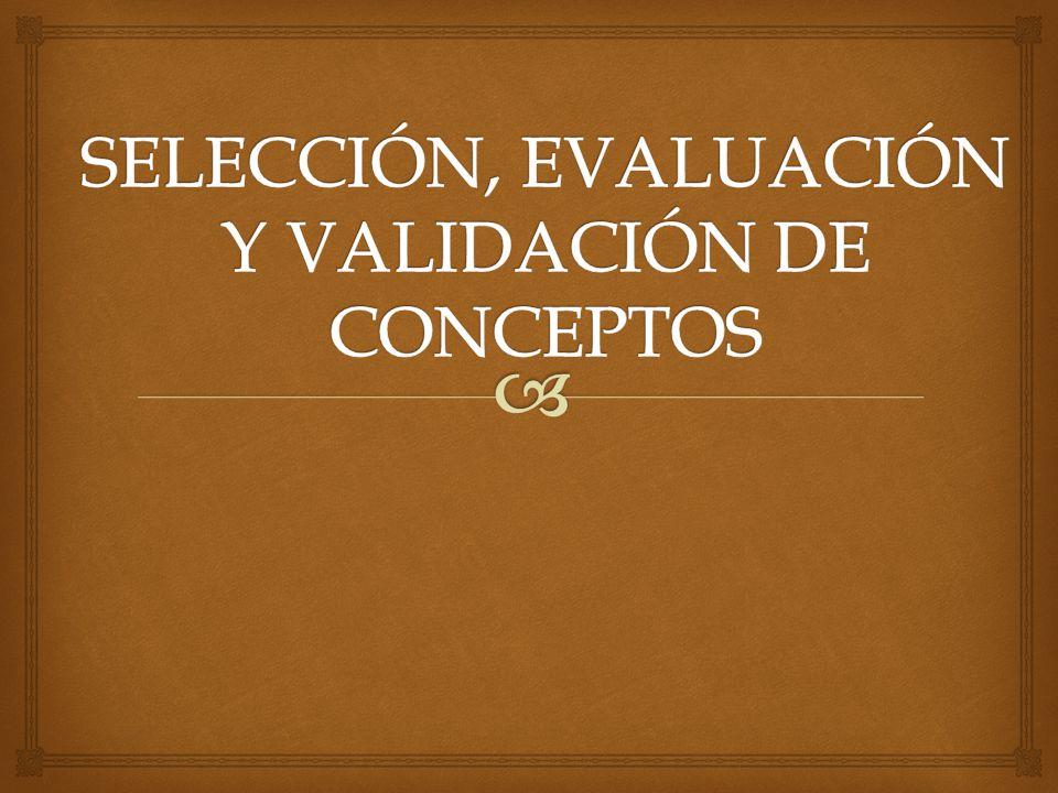 SELECCIÓN, EVALUACIÓN Y VALIDACIÓN DE CONCEPTOS