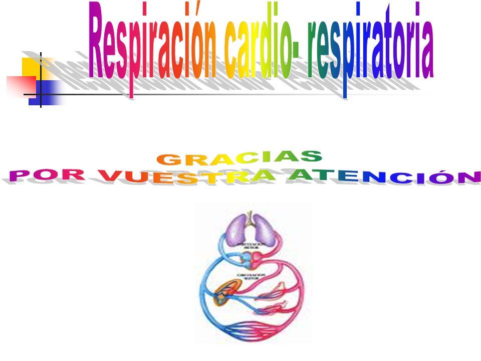 Respiración cardio- respiratoria