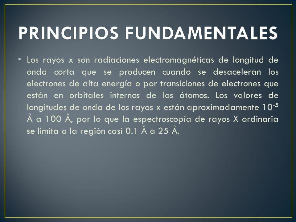 PRINCIPIOS FUNDAMENTALES