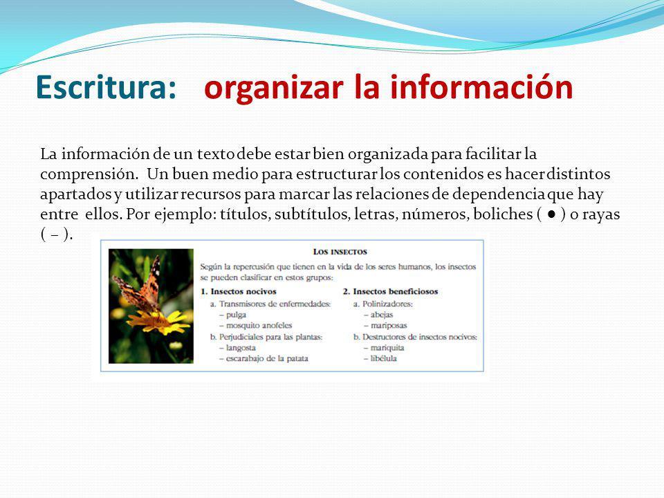 Escritura: organizar la información