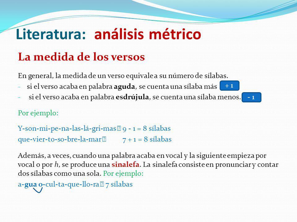 Literatura: análisis métrico