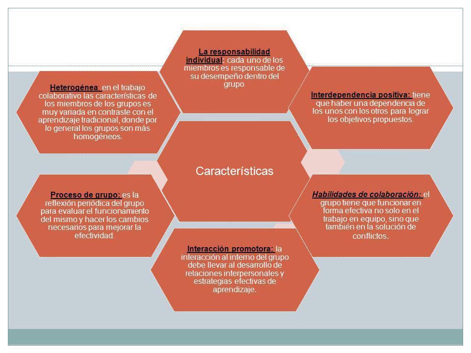 Características La responsabilidad individual: cada uno de los miembros es responsable de su desempeño dentro del grupo.