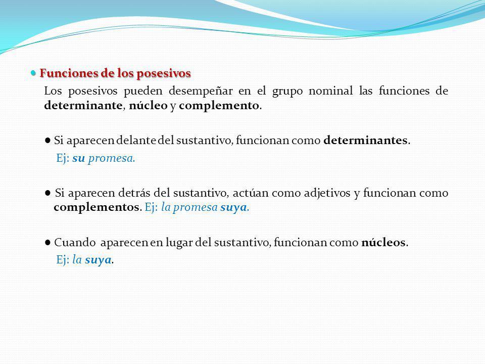 Funciones de los posesivos