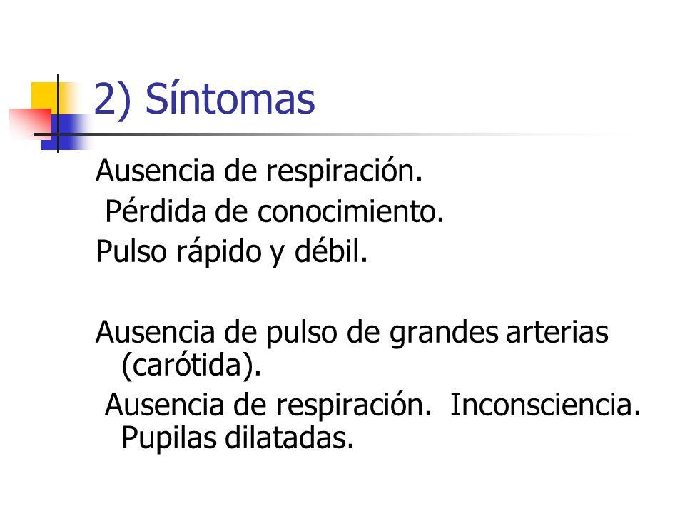 2) Síntomas Ausencia de respiración. Pérdida de conocimiento.