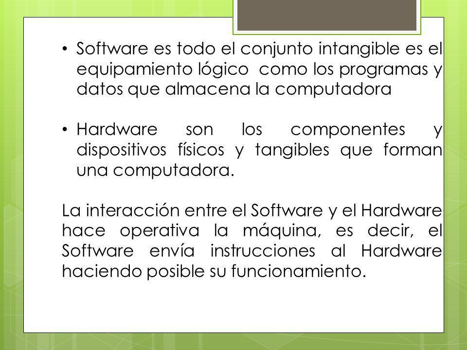 Software es todo el conjunto intangible es el equipamiento lógico como los programas y datos que almacena la computadora