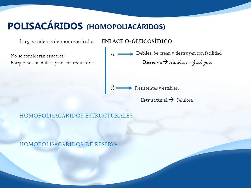 POLISACÁRIDOS (HOMOPOLIACÁRIDOS)