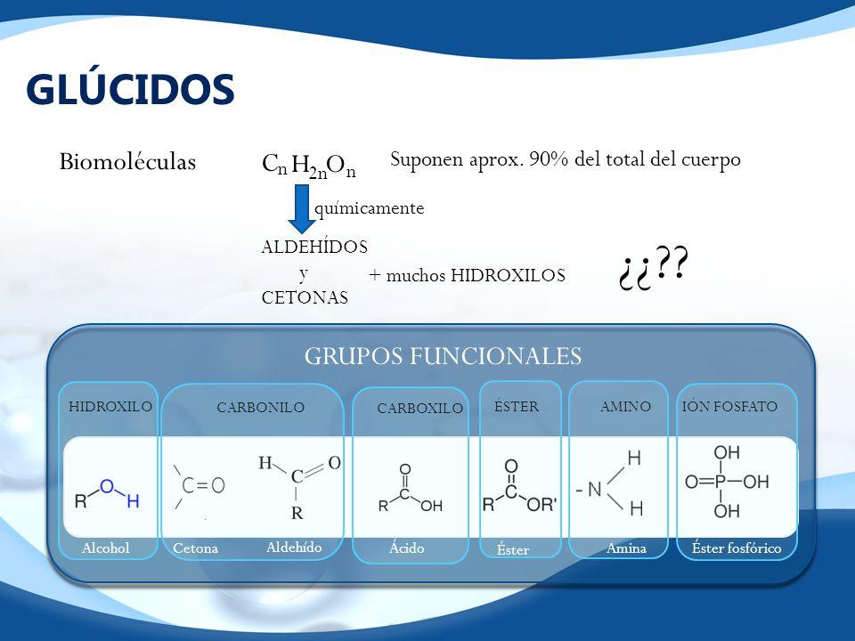 ¿¿ GLÚCIDOS Biomoléculas C H O GRUPOS FUNCIONALES