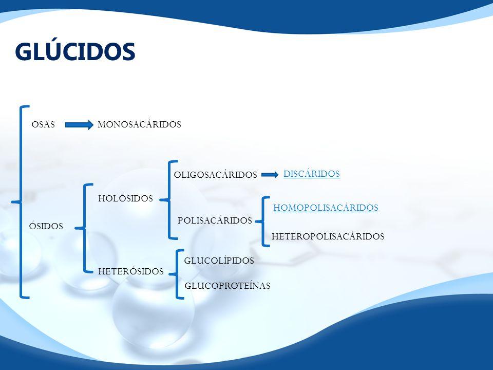 GLÚCIDOS OSAS MONOSACÁRIDOS OLIGOSACÁRIDOS DISCÁRIDOS HOLÓSIDOS