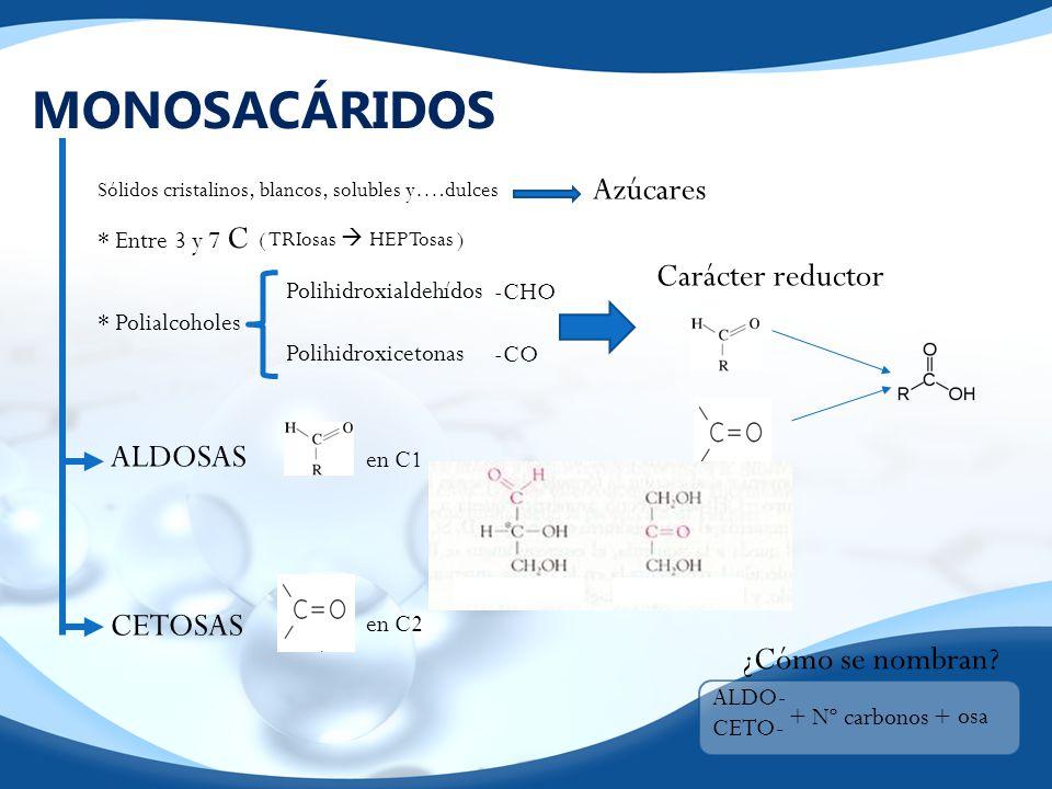 MONOSACÁRIDOS Azúcares Carácter reductor ALDOSAS CETOSAS