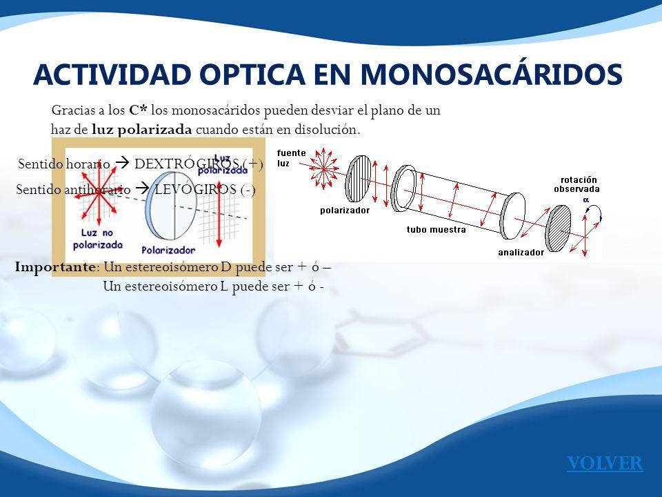 ACTIVIDAD OPTICA EN MONOSACÁRIDOS
